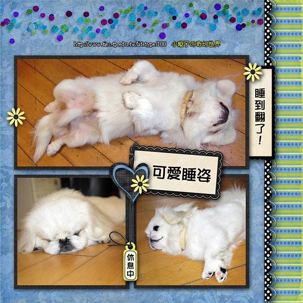 201006dog-book12.jpg